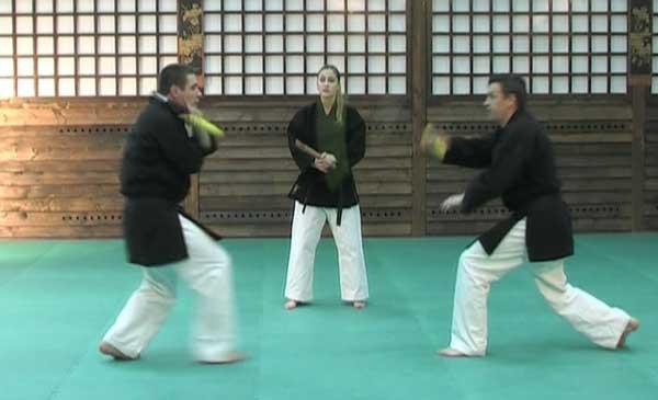 آموزش هنر های رزمی -سلاح سرد نانچاکو